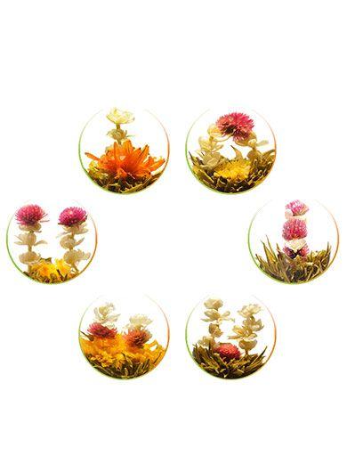 Assortiment : 6 fleurs de thé vert - Boite