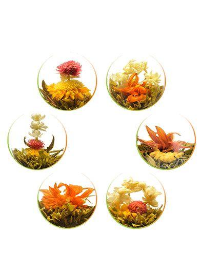 Demi-douzaine : 6 fleurs de thé vert - Boite
