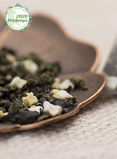 Infusette de thé Oolong pêche : thé en sachet