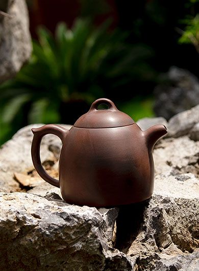 Théière Qinquan 300 ml