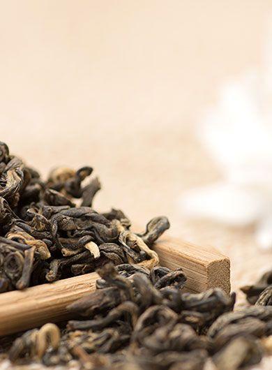 Thé noir bio de l'escargot rouge