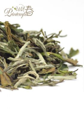 BaiMuDan classico : thé blanc