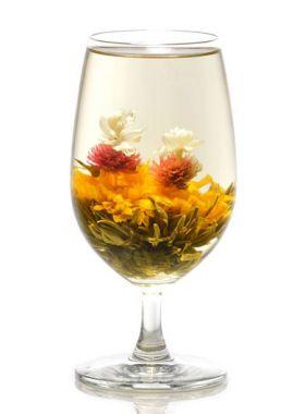 Jardin japonais, une fleur de thé du soleil levant