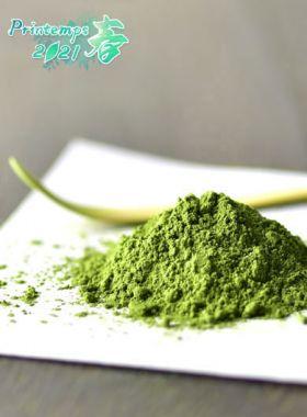 Matcha Bio : thé vert en poudre