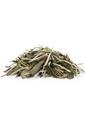 Pivoine Blanche Bio ; Pai Mu Tan : thé blanc