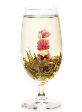 Rouge et blanc : fleur de thé vert