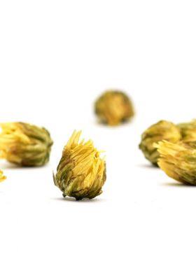 Boutons de chrysanthème TaiJu