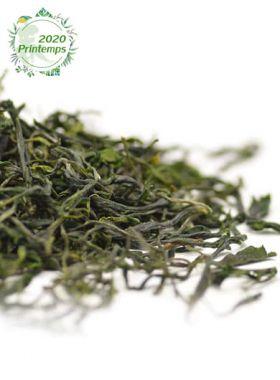 Tian Mu Mao Feng Bio : Thé vert