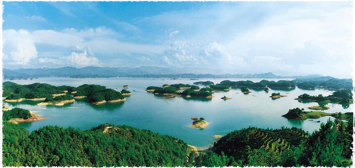 Qiandao Lake Tea Garden