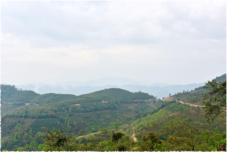 Fengqing